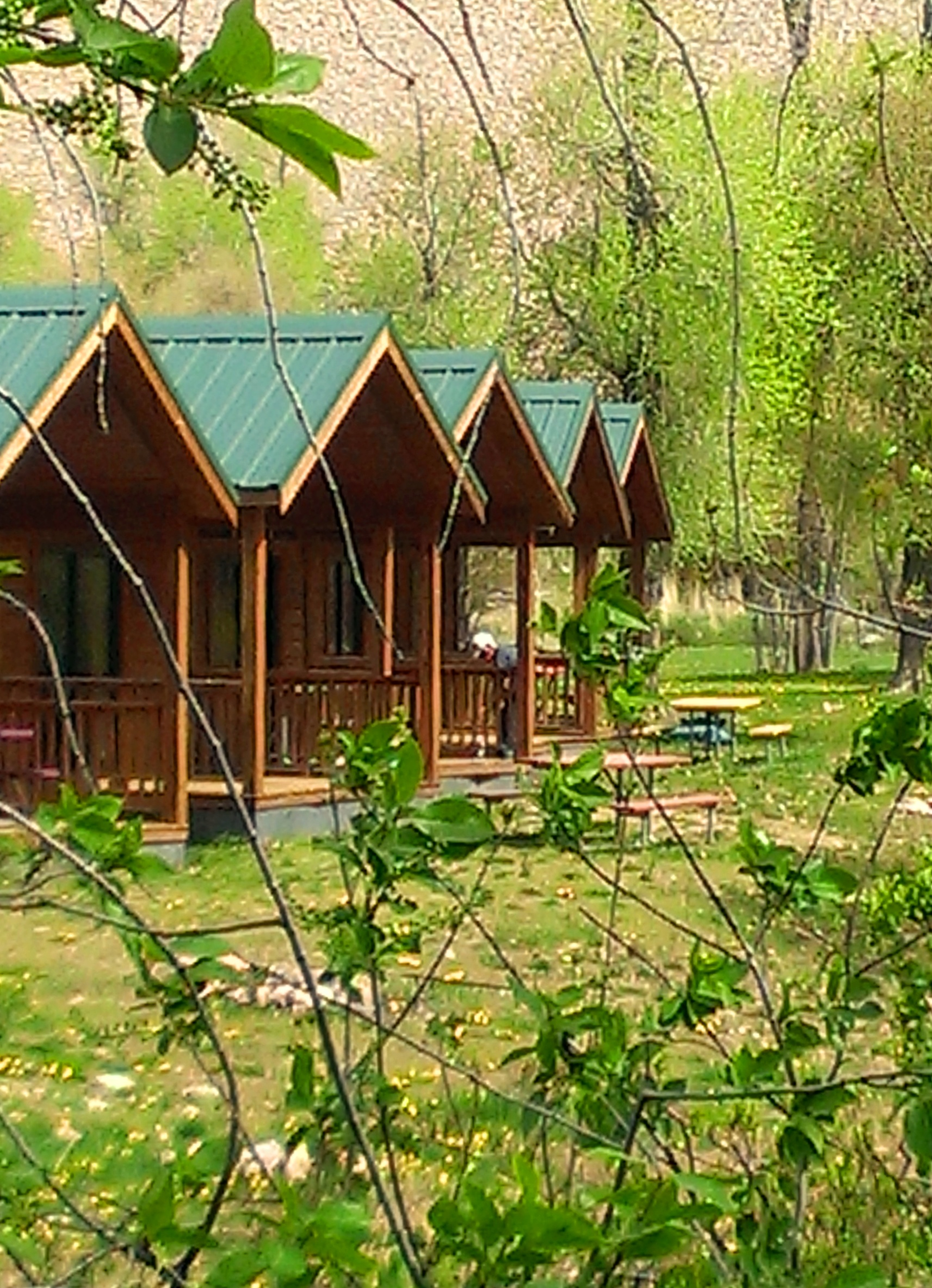 getimage hotels missouri in cabins resort bedroom westgate id cabin accommodations mo branson woods resorts two